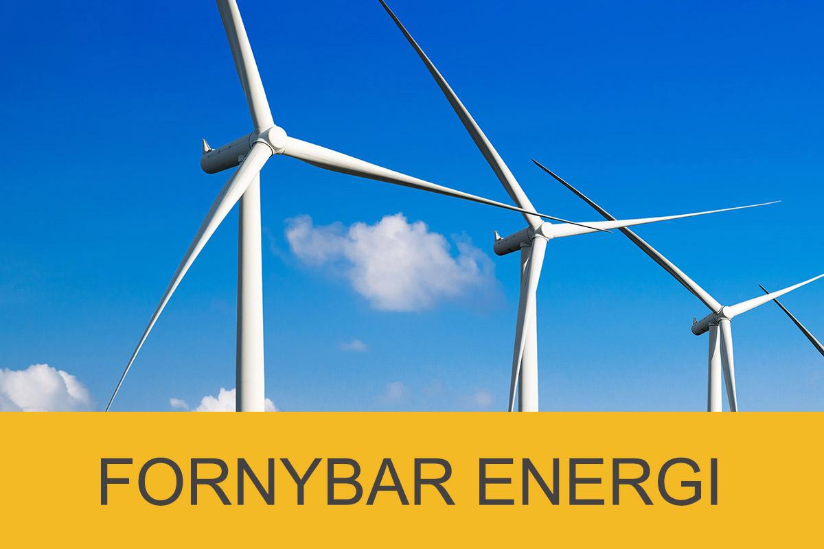 Fornybar Energi